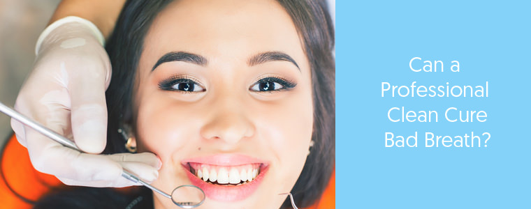 Professional teeth clean feature