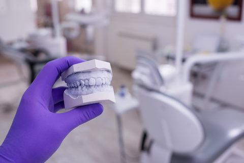 A model of a patients teeth